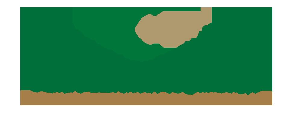 Bosnische moskee